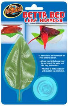 A naturalistic leaf hammock for your Betta to rest on. Allows your Betta to rest near the surface of the water just like they do in nature. Attaches to Betta Enclosure with suction cup (included). A naturalistic leaf hammock for your Betta to rest on. Colorful Fish, Tropical Fish, Freshwater Aquarium, Aquarium Fish, Aquarium Ideas, Betta Fish Care, Betta Fish Toys, Betta Tank, Beta Fish