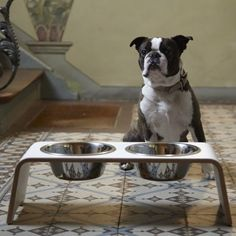 MiaCara dog bowl dogBar laminate white