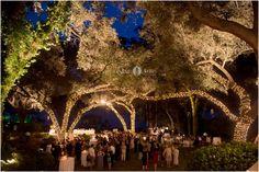 Wedding venue  |  Outdoor wedding reception  |  Market lights  |  Twinkling wedding reception  |  Aislinn Kate Photography