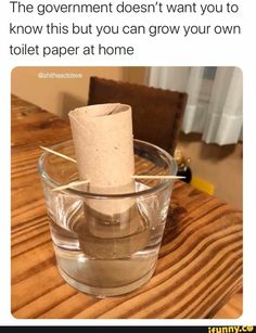 Here are 55 funny coronavirus memes that will make you LOL. We found the best coronavirus memes about social distancing, toilet paper, homeschooling, as well as ways to spread a little more kindness. Funny Memes, Jokes, Funny Quotes, Funny Sarcasm, True Memes, Diy Funny, Memes Humor, All The Things Meme, Funny Things