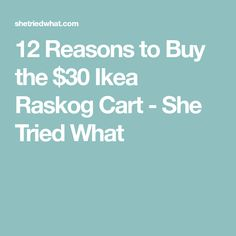 12 Reasons to Buy the $30 Ikea Raskog Cart - She Tried What