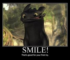Toothless Dragon- FAVORITE MOVIE EVER!