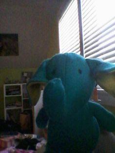 Stuffed animal named Elli the Elephant.  So cute!