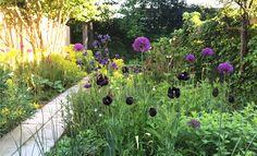 LOOSvanVLIET- Private garden Private Garden, Planting, Gardens, Plants, Outdoor Gardens, Garden, House Gardens
