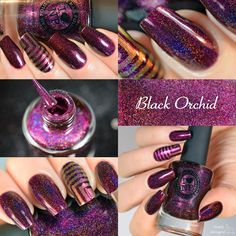 ILNP - Black Orchid | ILNP Fall 2014 | August 15, 2014 | Words aren't enough to express how pleased I am with this polish. I've been daydreaming about this color for almost 2 years now and every time I tried to make it, the end result was never quite as I pictured... until now!  Black Orchid is an absolutely gorgeous deep burgundy / purple holographic polish. It's simply stunning under any type of light, indoor or outdoor.   Ultra feminine and beyond sexy, Black Orchid is definitely a…