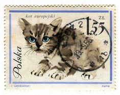 Poland Postage Stamp: Kitten by karen horton, via Flickr
