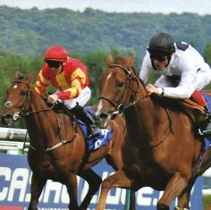 Frankie Dettori riding Ribbons to victory in a Group 1 race at Deauville, 24 August 2014.