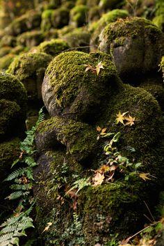 Temple, Buddha, Medieval, Meditation, Japan, Explore, Landscape, Stone, Plants