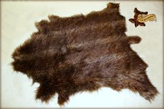 bear pelt - Google Search