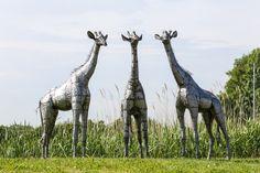2ft baby giraffe group of sculptures from Pangea #art #metalsculpture #africanart