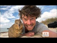 Los Selfies con animales más Divertidos - Afecto Animal. - YouTube