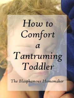 The Blasphemous Homemaker: How To Comfort a Tantruming Toddler. Some Really good developmentally appropriate ideas.