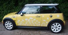 Daisy Vinyl Silhouette Decal Stickers for a MIni by tonyabug