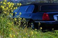 San Francisco Shore Excursion: Private Limousine Tour to Wine Country