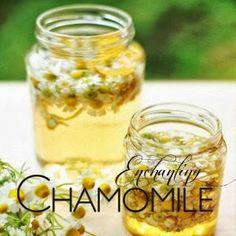 26 eco pages : Φτιάχνουμε χαμομηλόλαδο! Homemade Beauty, Diy Beauty, Beauty Hacks, Magic Herbs, Beauty Elixir, Beauty Cream, Lotion Bars, Healing Herbs, Massage Oil
