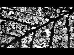 Alexanders Whetstone London - YouTube