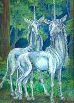 Pair of Unicorns by tunacarp.deviantart.com on @DeviantArt