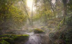 La Cosanne in the Mist