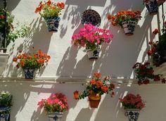 Mi ciudad. My city. Granada. Andalucía. Andalusia. España. Spain #TiendasOnline #Gourmet #bottleandcan #Granada #Andalucia #Andalusia #España #Spain  http://tienda.bottleandcan.com/es/
