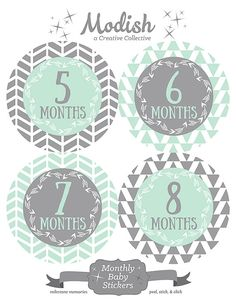 ♥ FREE GIFT - Milestones Sticker Set♥ Receive a FREE SET of MILESTONE STICKERS: I can roll over, I can sit up, I can crawl, I can walk. This is a  value for free, and no extra charge for shipping. Order any monthly baby sticker set {months 1-12}, and you will automatically receive a coordinating set of milestone baby stickers for FREE. Hurry! This is a limited time offer. This set includes 12 monthly baby stickers (plus 4 FREE Milestones Stickers), and arrives packaged for gift giving…