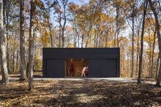 James River House | ARCHITECTUREFIRM, Peter Johnson Builders | Archinect