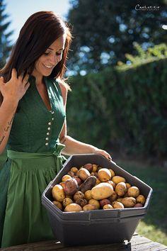 Paul Potato: Kartoffelernte{Zeit} Garden Planning, Ad Home, Lawn And Garden, Garden Design, Yard Design