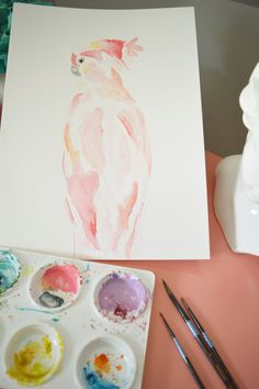 First Giveaway!! watercolor cockatoo pink