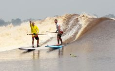 """Here's a great personal story of riding the Bono tidal bore wave in Indonesia. Written by Giancarlo """"Jankie"""" Avancini."""