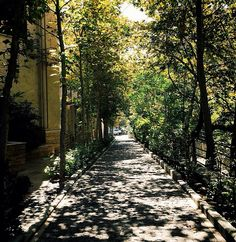 Freshteh street , Tehran , Iran. ♥ Iran is my country ♥
