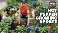 Growing Peppers, Original Song, Episode 5, All Plants, Stuffed Hot Peppers, The Creator, Seasons, Songs, Seasons Of The Year