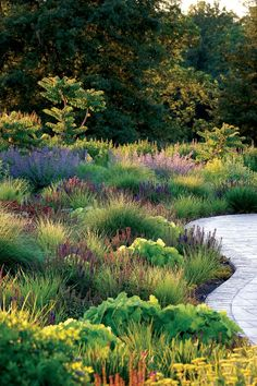 Architect & Designer Awards 2014 - St Louis AT HOME Magazine Residential Landscape Design Construction Half-Acre Or More Winner: Adam Woodruff + Associates (314)225-7119 www.adamwoodruff.com