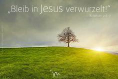 """""""Ihr habt der #Botschaft, die euch #verkündet wurde, #Glauben geschenkt und habt…"""
