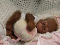 This is so cute! Reminds me of my little Becky boo! Orangutang 18 month old! I love the rebrn dolls too !! Theyvare so real looking!! I love them!!!!