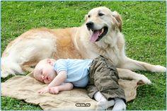 Самое прекрасное в мире - #дети и #животные  #ребенок #кошки #кот #россия #собаки #собака #кошка #люблюсобак #лабрадор #мопс #dogs #dog #lovedog #russia #animals #animal #cats #cat  #москва #серпухов #спб #самара #казань #урал