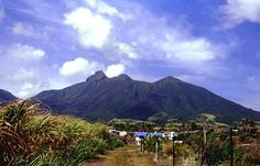 Mt Liamuiga volcano we climbed in St. Kitts
