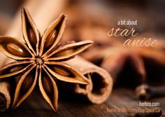 Info: Featured Spice - Star Anise - from MB Spice Co