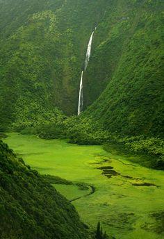 ✯ Oahu, Hawaii ✯