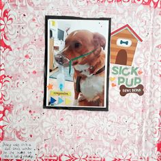 Hi peeps! Break the rules Monday is, where I take something that was not made for scrapbooking and make a layout with it! I am posting a. Sick, Peeps, Layouts, Scrapbooking, Frame, Animals, Picture Frame, Animales, Animaux