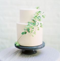 Simple white cake decorated with vines