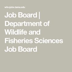 Job Board | Department of Wildlife and Fisheries Sciences Job Board Wildlife, Anna, Boards, Science, Math, Projects, Planks, Log Projects, Math Resources