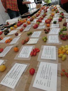 http://sin-die-weck-weg.de/blog/2015/09/07/besuch-bei-der-lila-tomate/