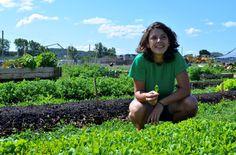 Futur campus de l'UdeM: faire pousser de la salade au milieu d'un chantier | Métro