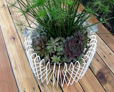 HousePet: ikea tradig as a planter