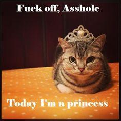 〰fuck off asshole.. today I'm a princess!