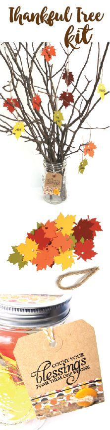 Thanksgiving Thankful Tree kit. Your family can use this kit to express their gratitude for their many blessings in a fun way. These make wonderful gifts and we be a perfect gift for your Thanksgiving Day host. (affiliate)