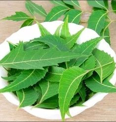 Remedies to remove dandruff from neem leaves. Remedies to remove dandruff from neem leaves. Home Remedies For Dandruff, Health Remedies, Natural Remedies, Gout Remedies, Holistic Remedies, Acne Treatment, Herbal Remedies, Juice, Health Tips
