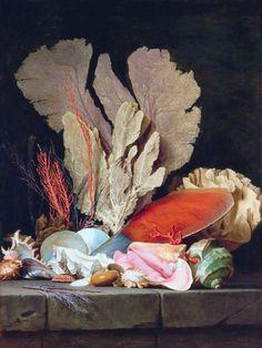 """Anne Vallayer-Coster - """"Plumas de mar, litofitos y conchas"""" (1769, óleo sobre lienzo, 130 x 97 cm, Museo del Louvre, París)  La pintora francesa Anne Vallayer-Coster fue una de las poquísimas mujeres que logró ser admitida en la Academia Real de..."""