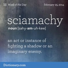 sciamachy: an act or instance of fighting a shadow or an imaginary enemy #dictionarycom #words