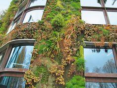 La ville du futur sera verte