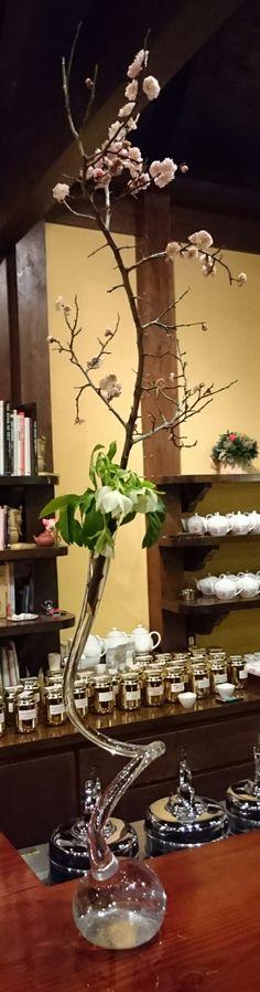 Ume( Plum flower ) and Glass vase.